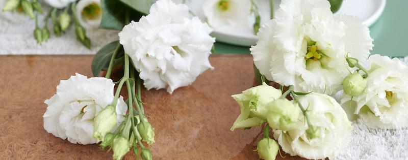 Verzorging van verse bloemen