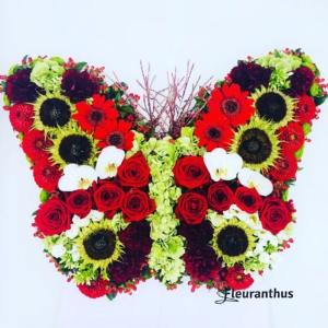 Bloemenvlinder Red Harmony