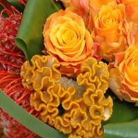 Structuur boeket oranje